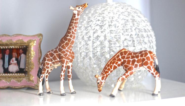 "The two ""original"" giraffes!"
