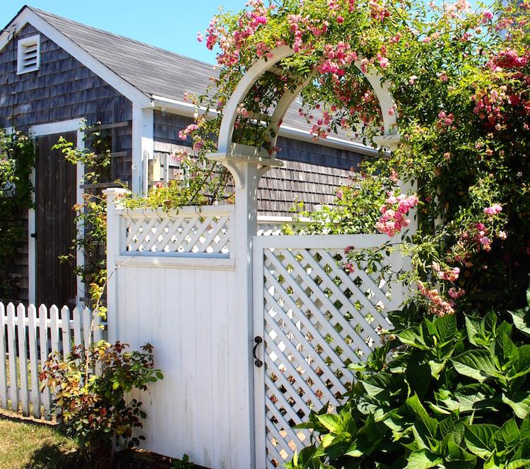 Garden Arches   Shining on Design