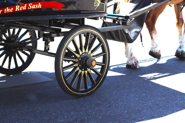 Horse-drawn carriage rides and cobblestone streets throughout Charleston bring you back in time.