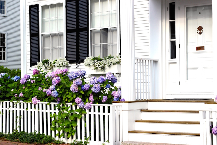 Beautiful homes, beaches, a charming historic downtown and darling shops make Nantucket a favorite summer destination.