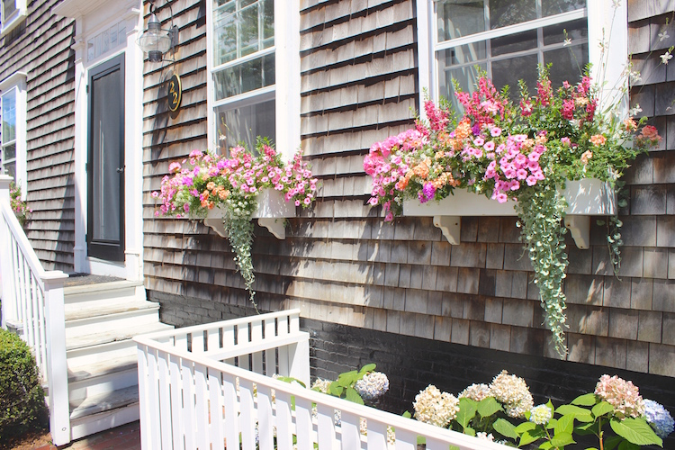 Nantucket is filled with sights to see, things to do and beaches to relax or catch a wave. One of my favorite things of exploring this island were style of the homes. Let's talk curb appeal!  Shining on Design